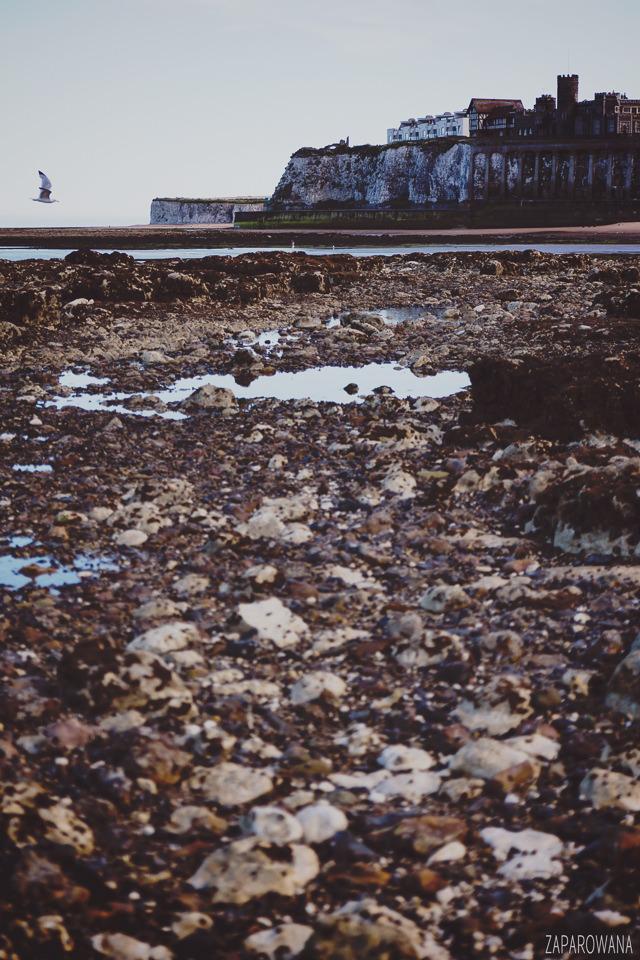 Botany Bay - Margate - ZAPAROWANA-6