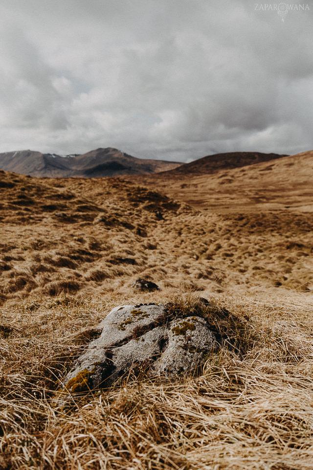 060 - Szkocja - Loch Lomond i okolice - ZAPAROWANA_