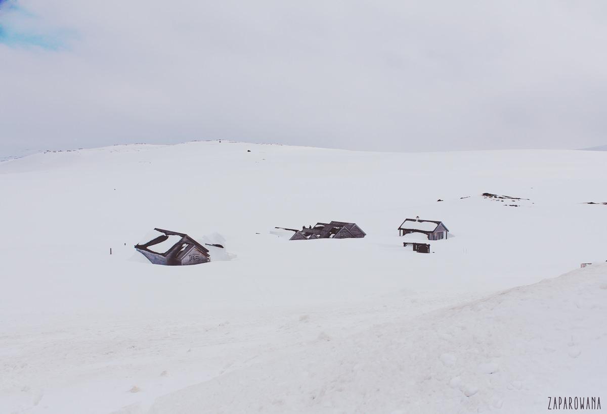 ZAPAROWANA - NORWEGIA
